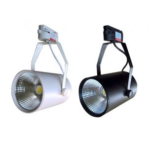 den-roi-ray-led-cob-20w